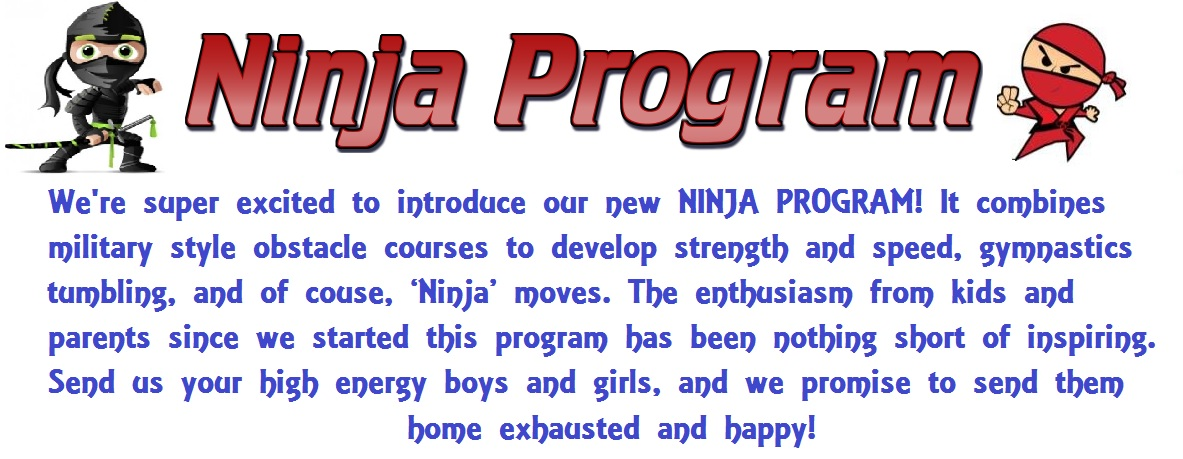 Ninja Program Boys Gymnastics